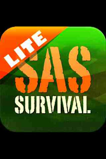 Icon SAS Survival Guide