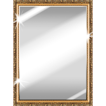 Best Mirror v3.9 AdFree Full APK