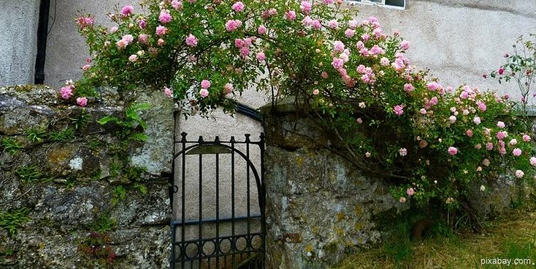Romantischer Eingang zum Garten