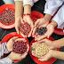 The Seedling Project: Menanam Kacang-Kacangan, Menyelamatkan Bumi