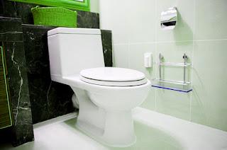 bahan-alami-pembersih-toilet.jpg
