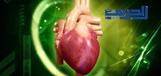 علاج روماتيزم القلب بالاعشاب