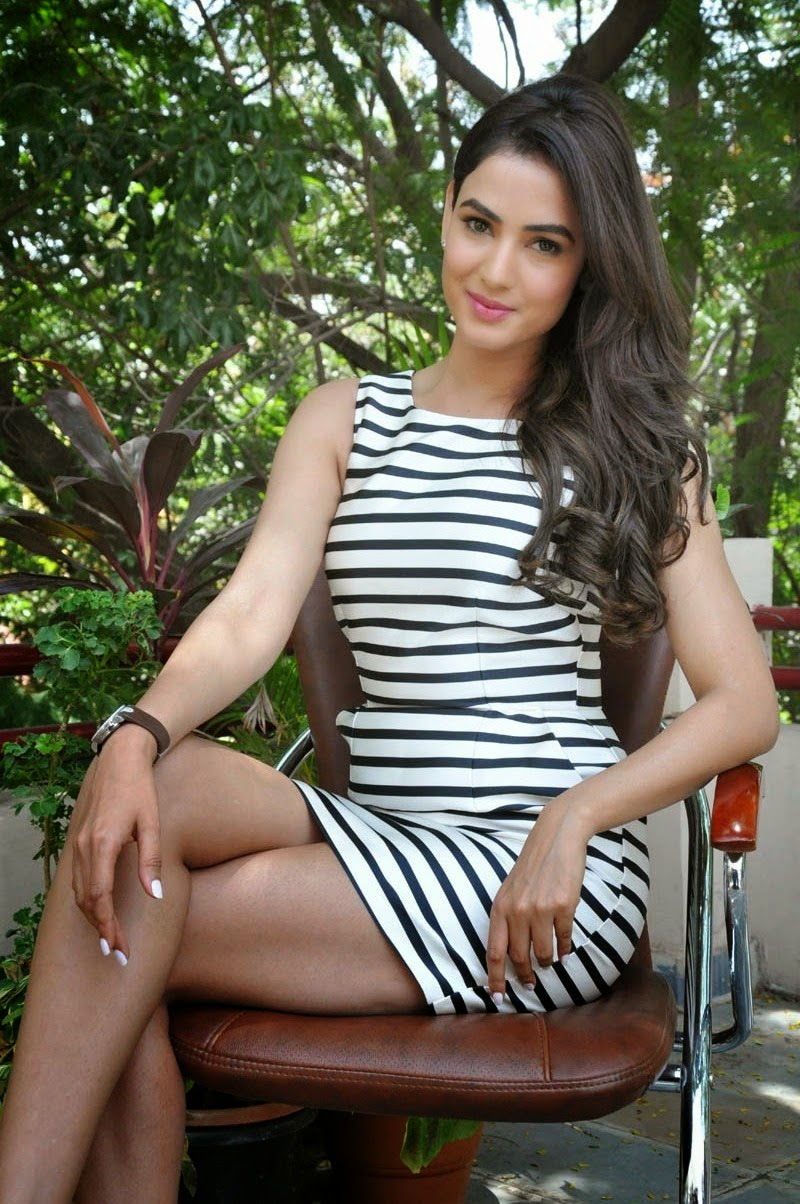 Sonal Chauhan Stills At Pandaga Chesko Movie Interview -3661