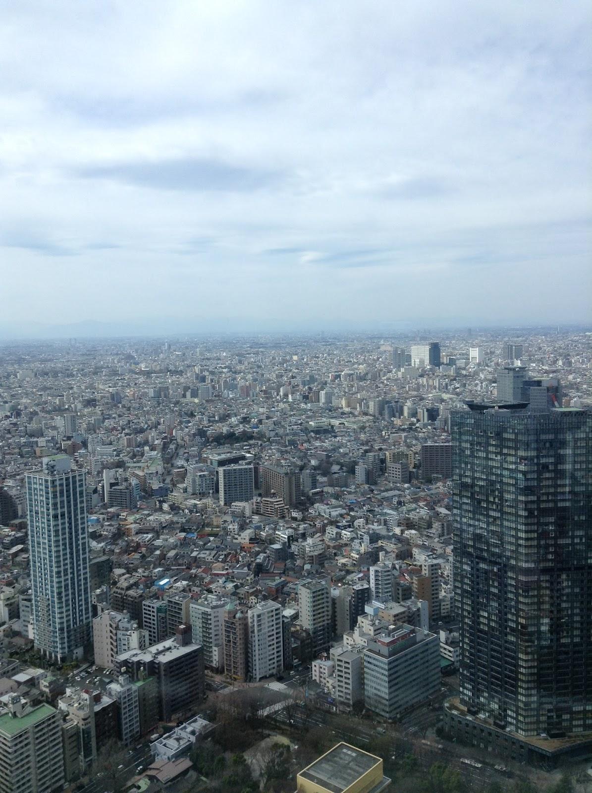 Shinjuku Metropolitan Government building Tokyo Skyline