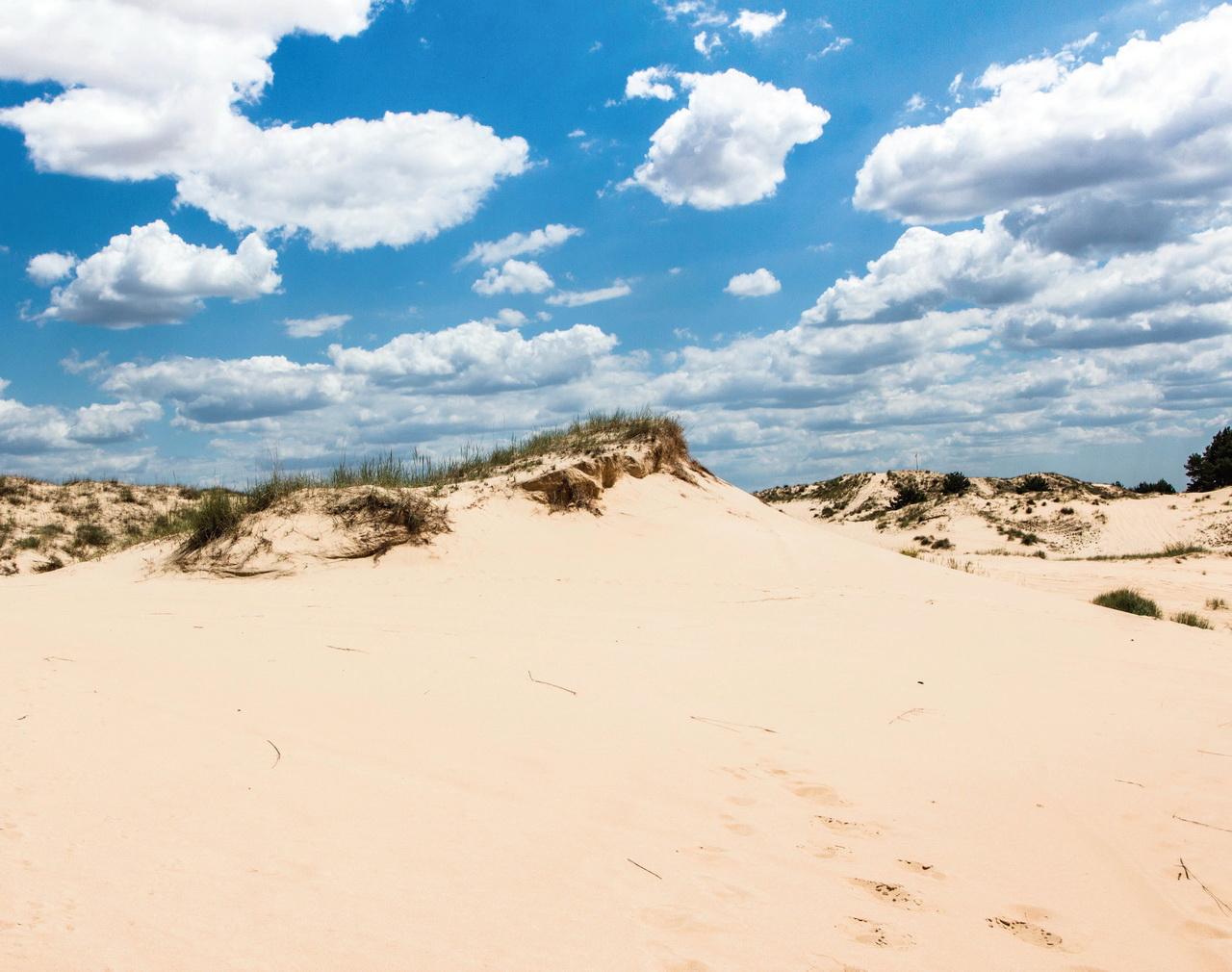 Экстрим-идеи в Украине: Олешковские пески | Tourism Visit Kherson ...