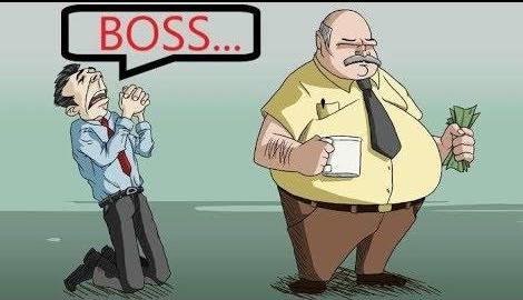 bos besar