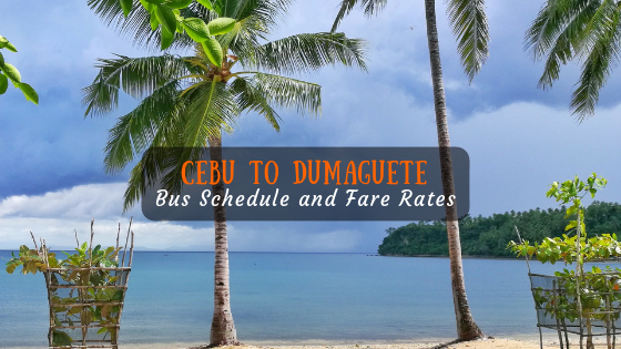 Cebu to Dumaguete Bus Schedule and Fare