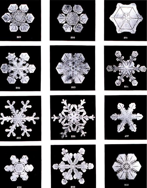 Фотографии снежинок Уилсона Бентли
