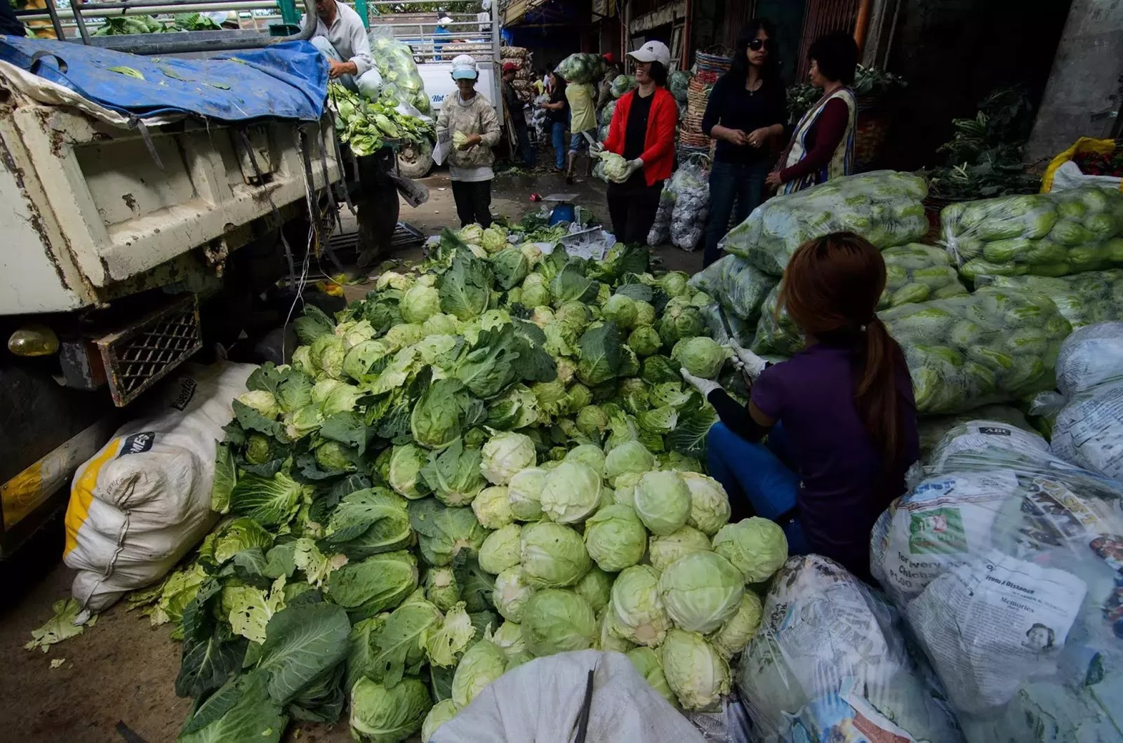Fresh Vegetable Cleaner Trading Post La Trinidad Benguet Cordillera Administrative Region Philippines