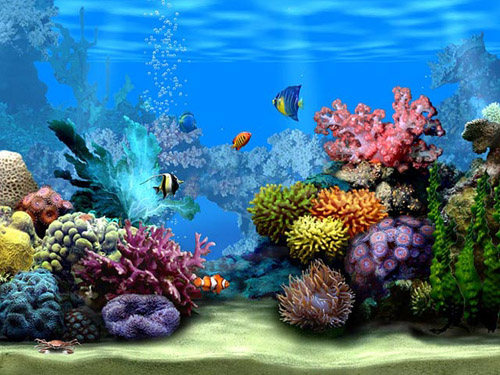 3D Window Themes for PC free download Animation Themes Download