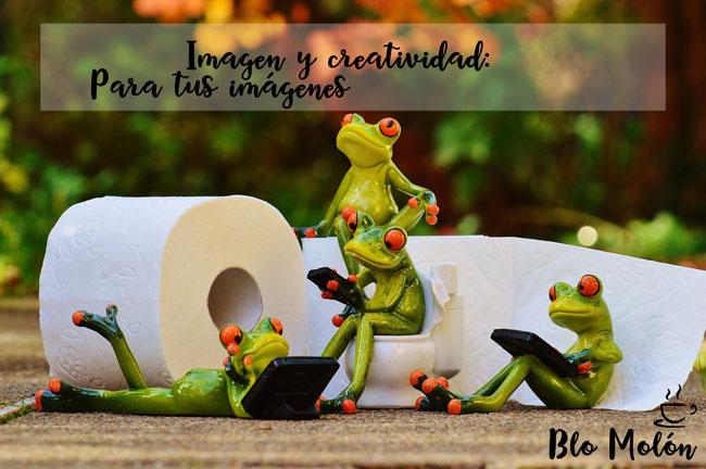 imagen y creatividad en tus imágenes