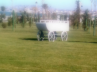 horse white cart photo