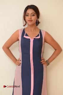 Actress Anu Emmanuel Pictures in Long Dress at Majnu Audio Success Meet 0013