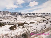 加州微風號雪景