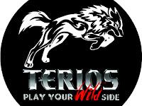 Cover Ban Terios Type 41