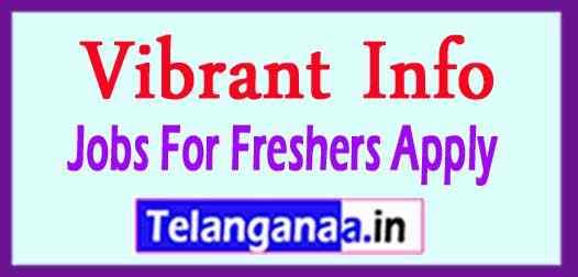 Vibrant Info Recruitment  Jobs For Freshers Apply