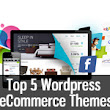 Top five Wordpress eCommerce Themes - Learn Wordpress