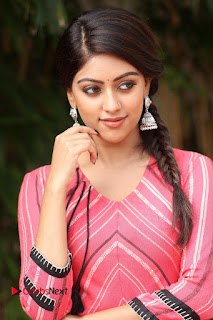 Actress Anu Emmanuel Pictures at Majnu Success Meet  0007.JPG