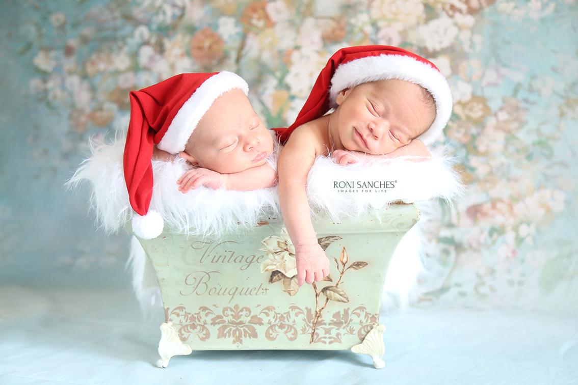 Newborn de Natal Sp