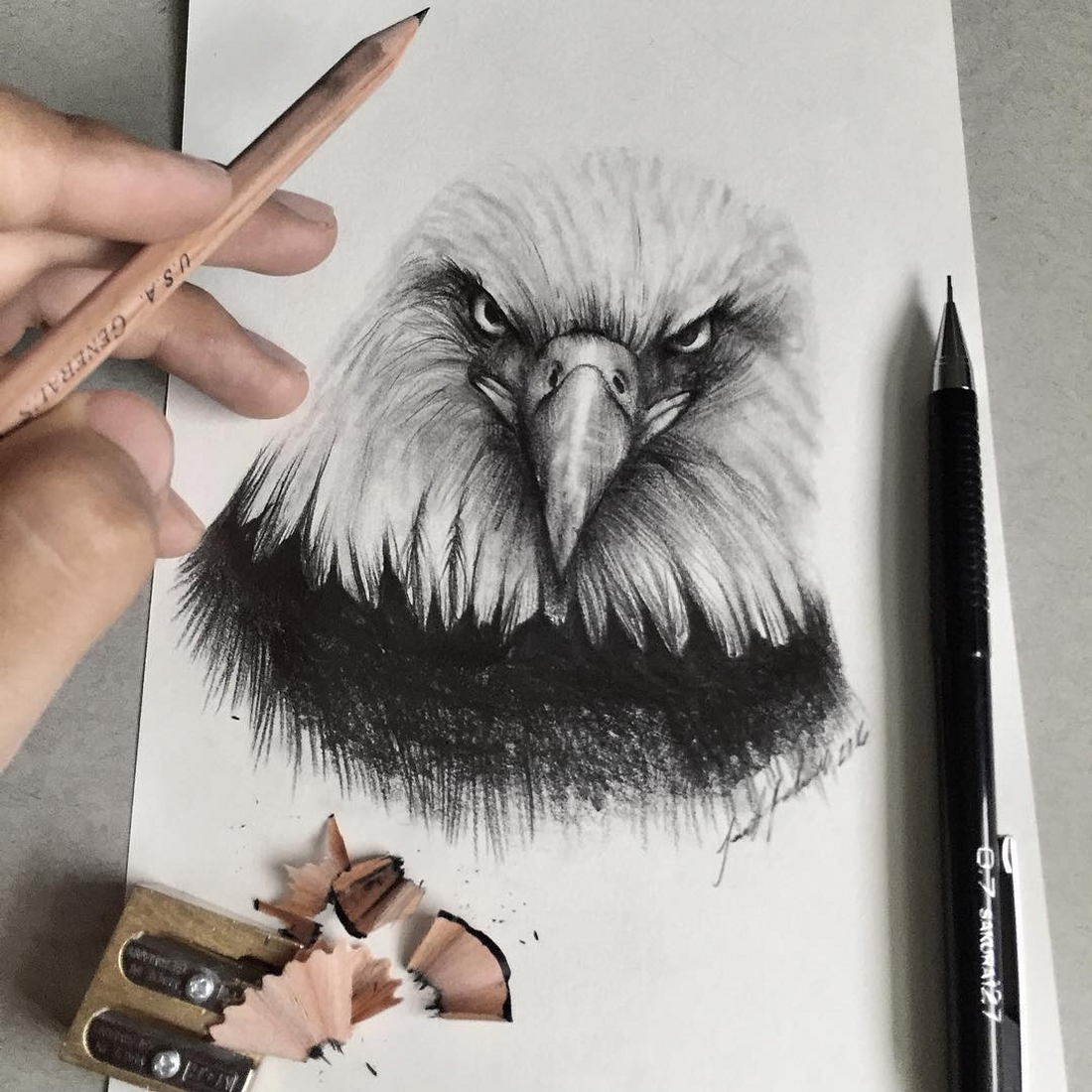 09-Bald-Eagle-Jonathan-Martinez-Realistic-Pencil-Animal-Drawings-www-designstack-co