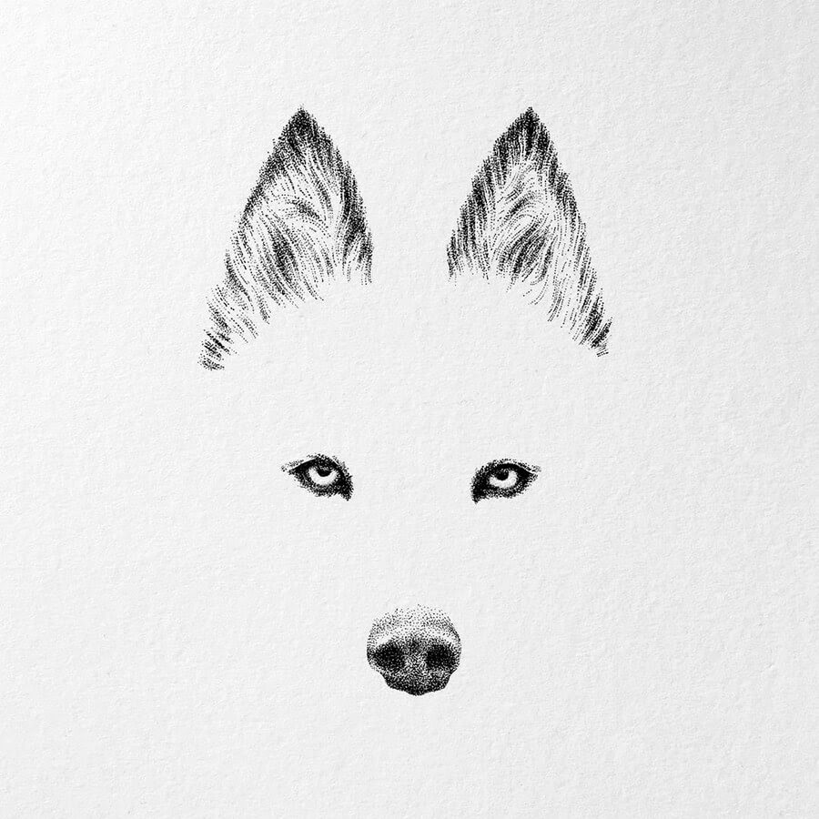 04-Minimalist-Husky-Nelly-Todorova-www-designstack-co