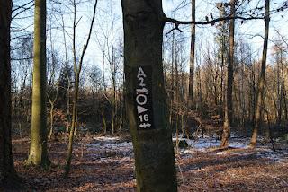 Ein Baum, auf den verschiedene Wanderzeichen gemalt wurden