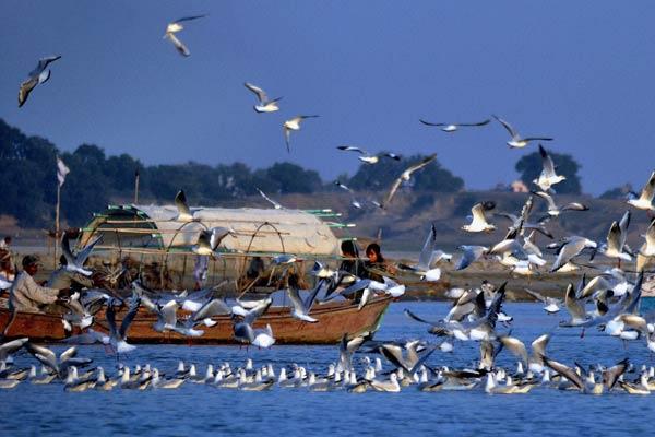Jatinga – Assam