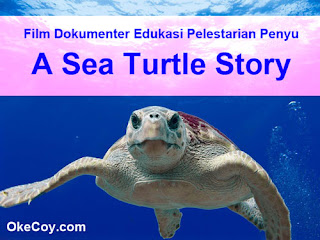 Film Dokumenter Edukasi Pelestarian Penyu : A Sea Turtle Story