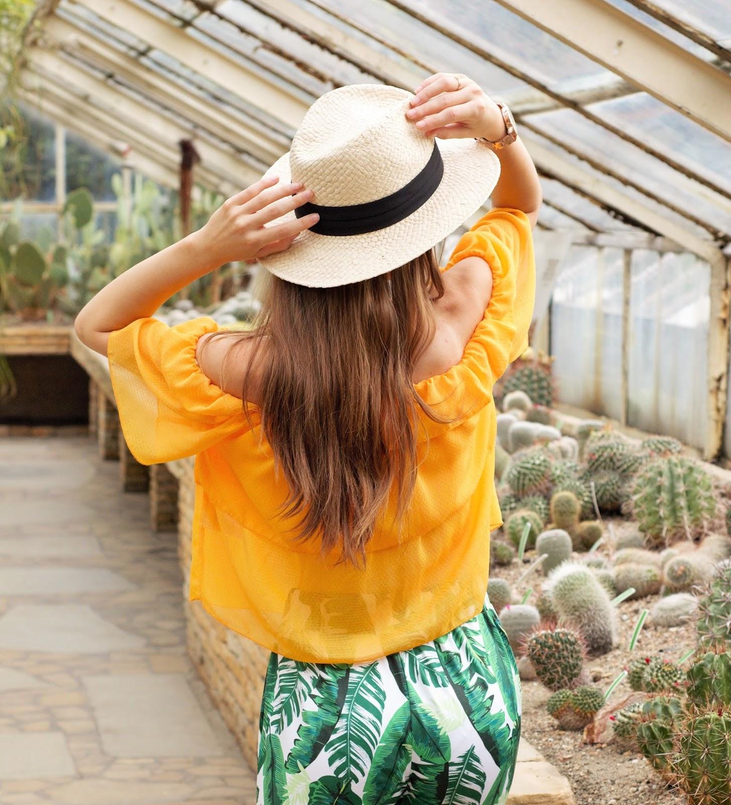 kolorowa stylizacja | kaktusiarnia