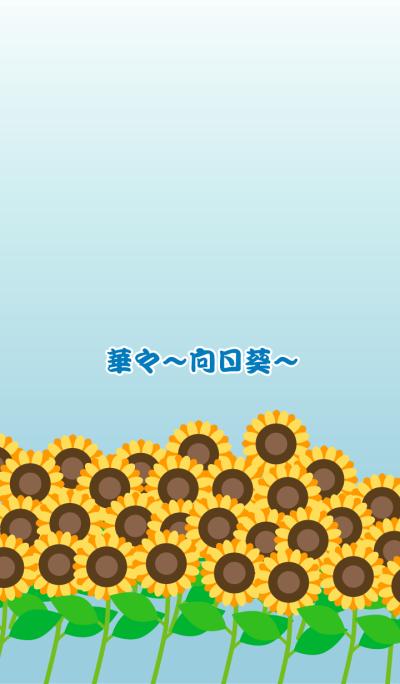 Flowers -sunflower-
