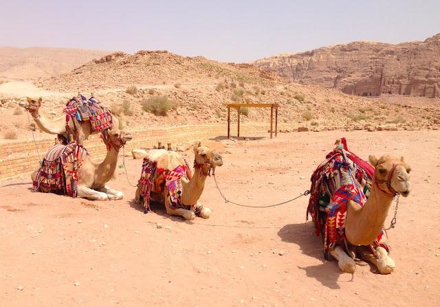 Colori giordani - foto di Elisa Chisana Hoshi