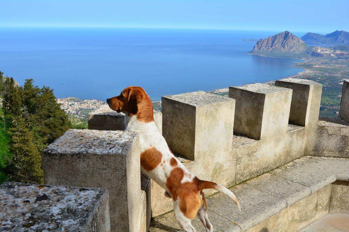 Des murailles de la forteresse, le paysage étendu sur le Monte Cofano entre autres ne laisse personne de marbre...