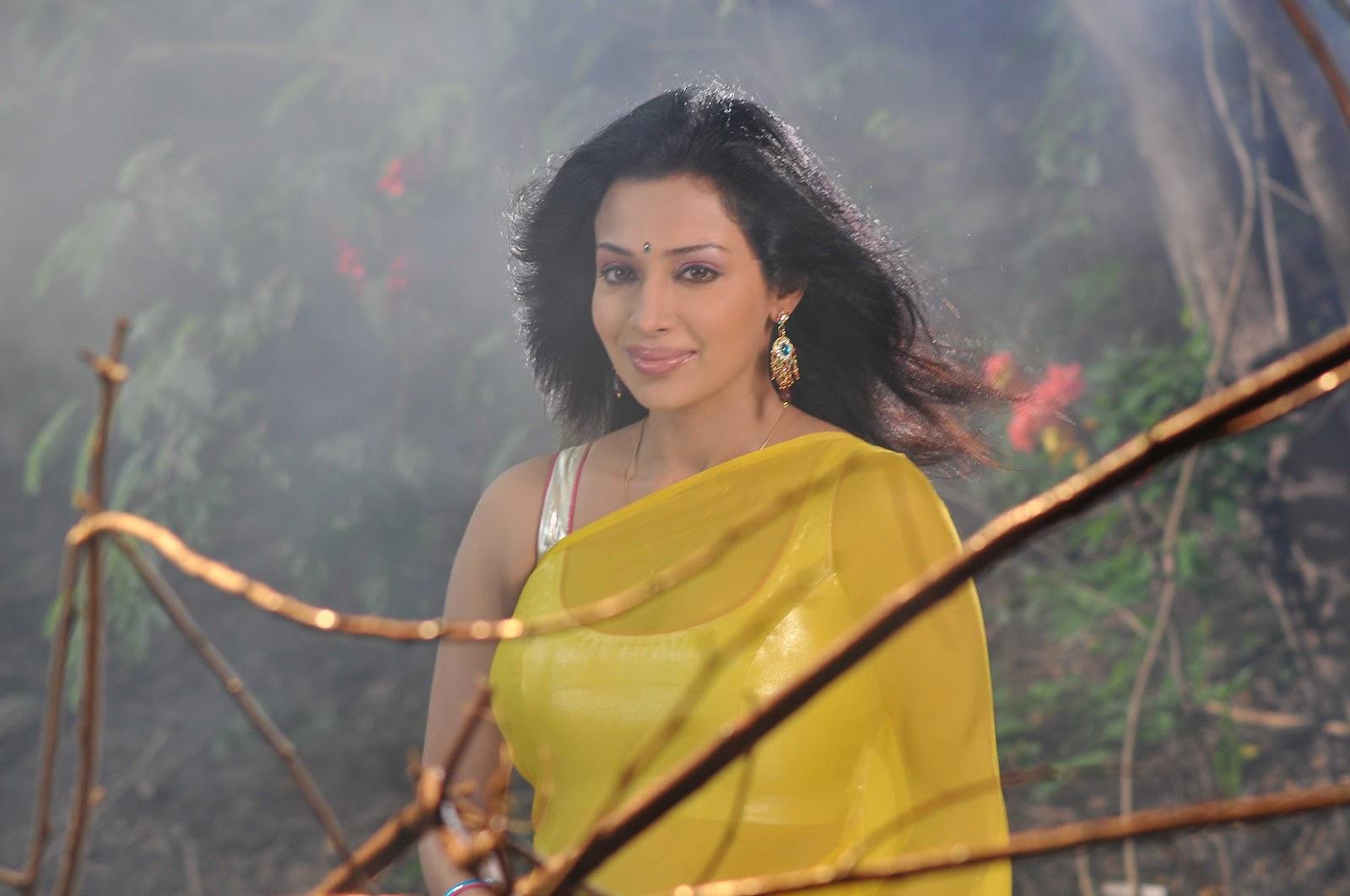 Asha Shaini Hot Saree Photos  Actress Saree Photossaree -6211