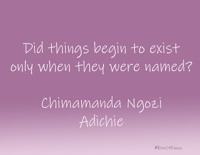 A short summary and review of the book Americanah by Chimamanda Ngozi Adichie with a quote and questions to ponder.