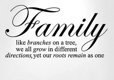 Family Quotes Read Read Loved