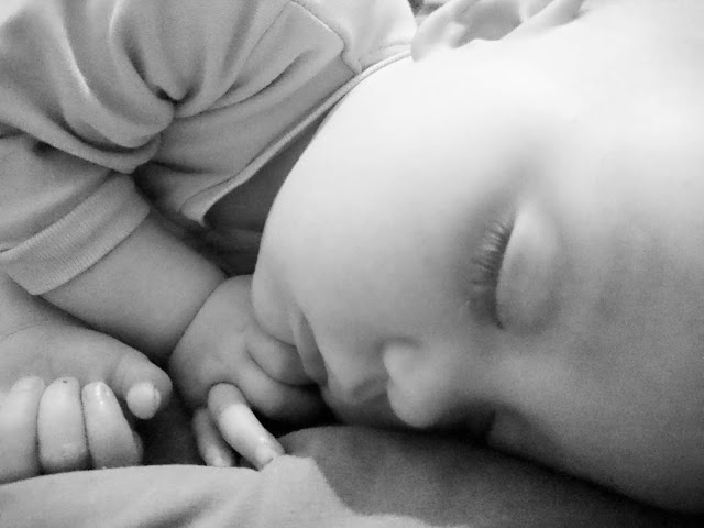 Scarlet sleeping peacefully in black and white. Project 365 Day 201 July 20th 2018 on Us Two Plus You