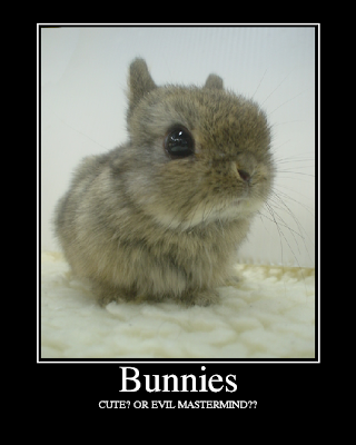Bunnies - Evil?