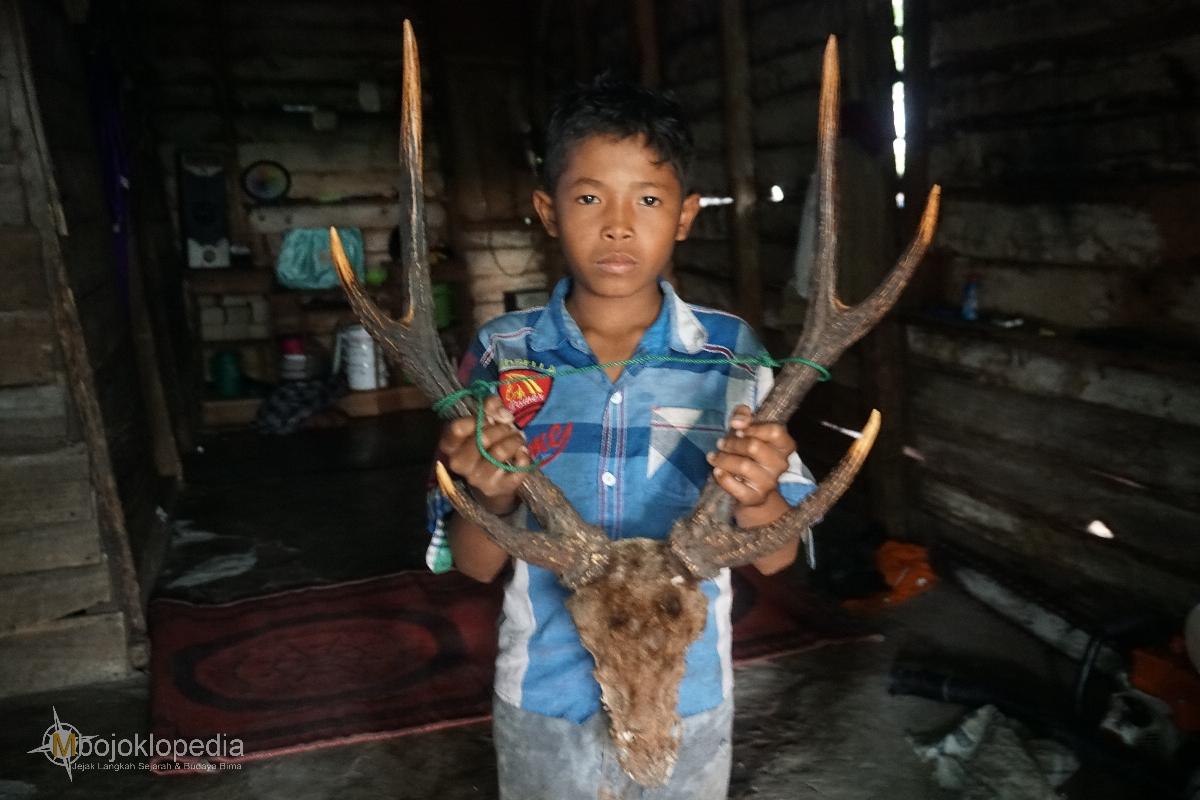 Bermalam Di Pondok Pemburu Lereng Tambora Mbojoklopedia