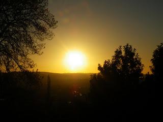 VENUS IN FRONT OF SUN