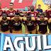 El dato: 63,3%, el rendimiento del DEPORTES TOLIMA como local en la Liga Águila 1 2016