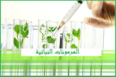 الأوكسينات الهرمونات فى النبات