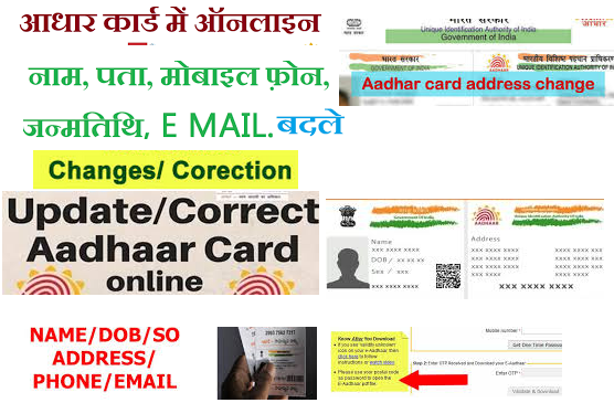 How to update or correct Aadhaar details online and offline