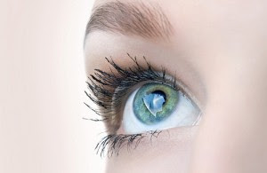 Le bleuet pour avoir des yeux plus clairs brillants et frais.