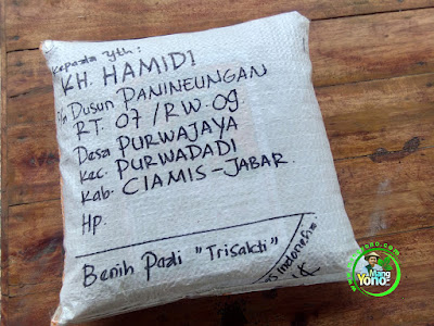 Benih pesana KH. HAMIDI Ciamis, Jabar..  (Sesudah Packing)