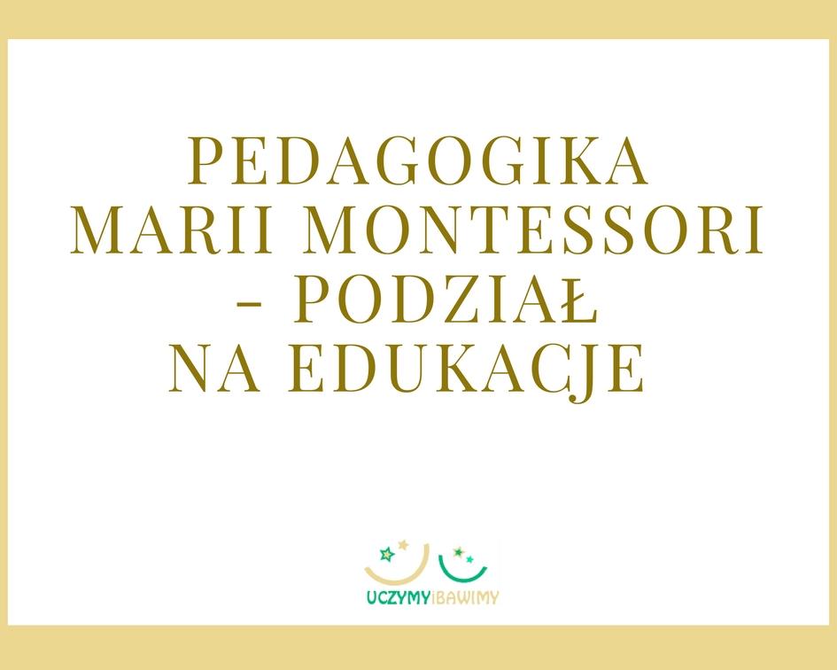 Pedagogika Marii Montessori - podział na edukacje