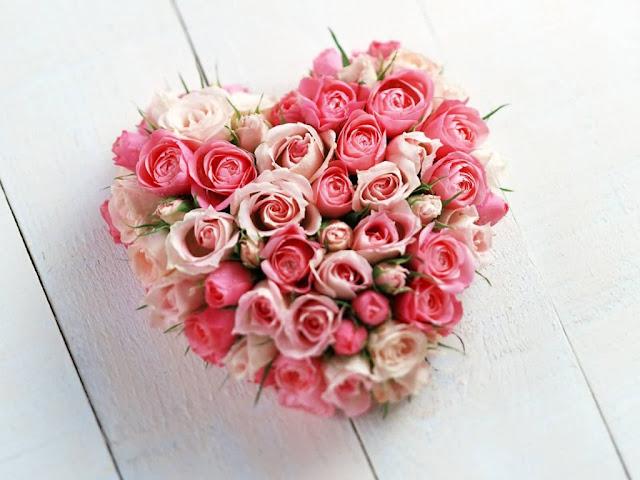 rose love wallpapers | beautiful flowers wallpapers | flowers ...