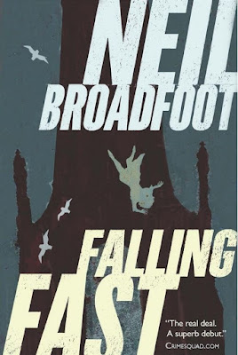Falling Fast by Neil Broadfoot