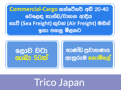 Ni-Cey Group of Companies: Freight Forwarding