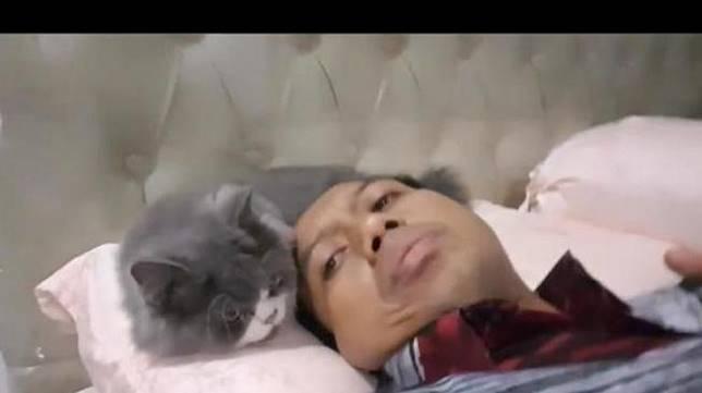 Begini Ceritanya Saat Sutopo BNPB Curhat Soal Kanker ke Kucing Peliharaan