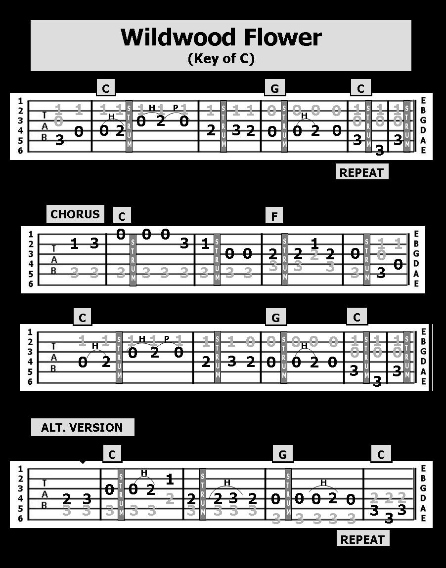 Guitar TAB Songs: WILDWOOD FLOWER
